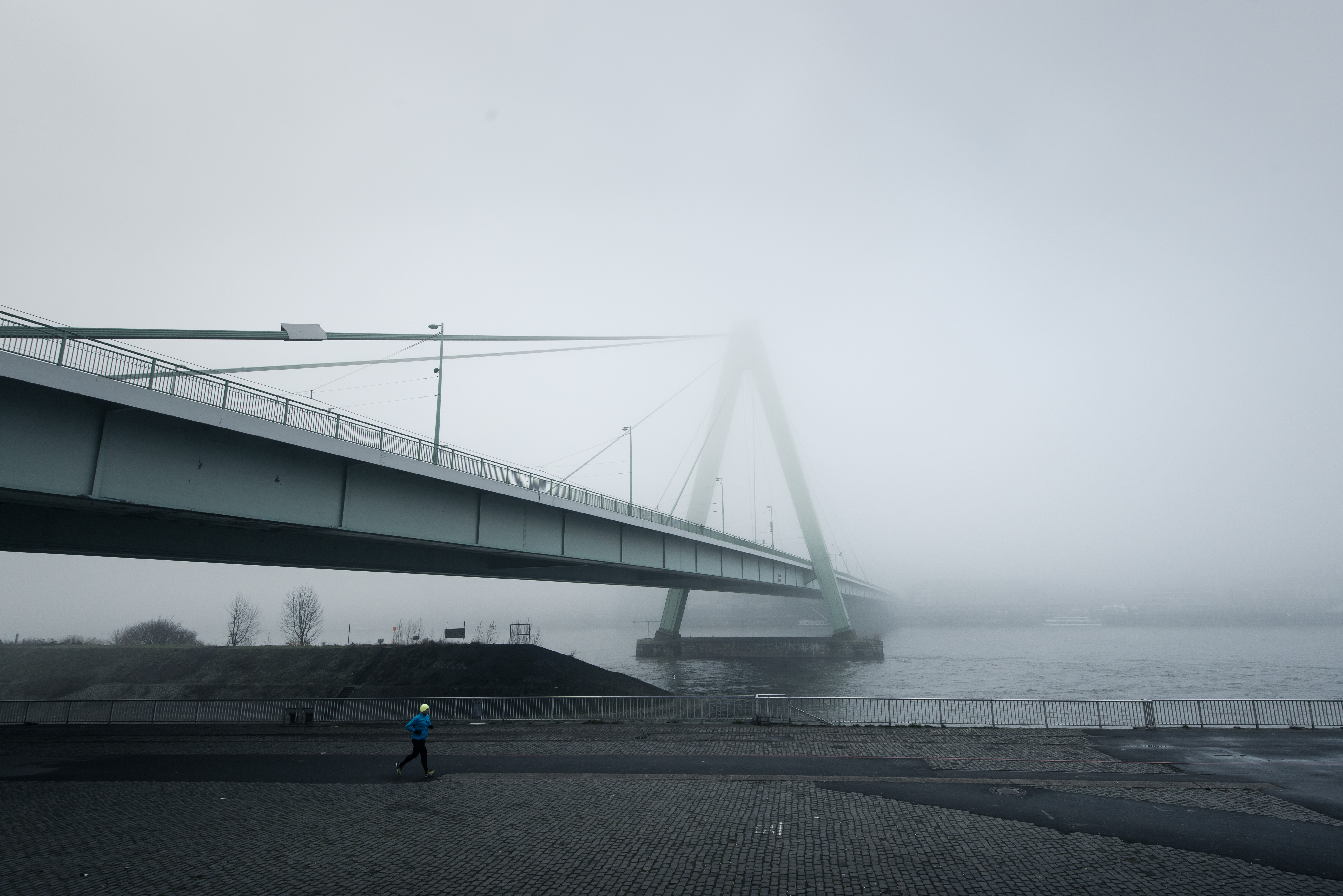 Weather Gallery - Fog
